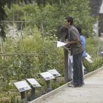 Escolars treballant dins l'Ecomuseu