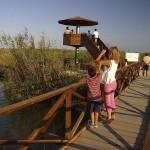 Mirador del Pont del Través, al Clot de l'Encanyissada